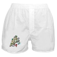 Maine Map Boxer Shorts