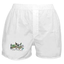 Massachusetts Map Boxer Shorts