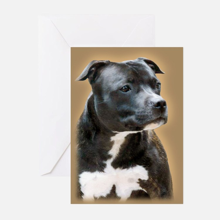 Rugby SBT Greeting Cards (Pk of 20)