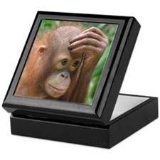 Cute Orangutan Keepsake Box