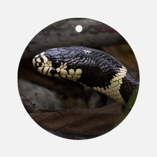 King Snake Ornament (Round)