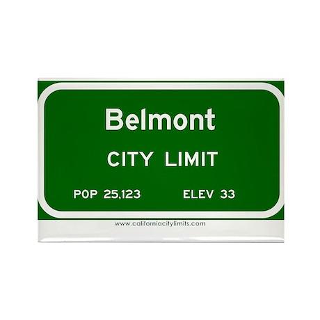 Belmont Rectangle Magnet (10 pack)