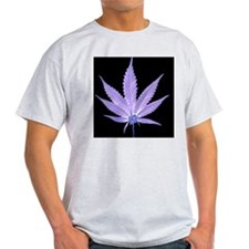chill Ash Grey T-Shirt