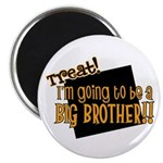 trick or treat halloween big brother Magnet