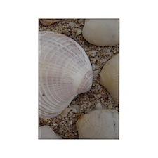 Shells Rectangle Magnet