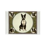 Boston Terriers Rectangle Magnet