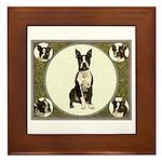 Boston Terriers Framed Tile