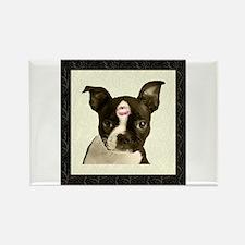 Boston Terrier Kiss Rectangle Magnet