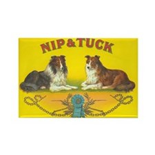 Nip & Tuck Collie Dogs Art Rectangle Magnet
