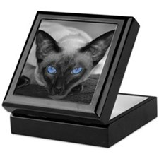 Siamese Cat B&W Photo Art Keepsake Box