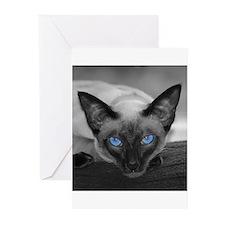 Siamese Cat B&W Photo Art Greeting Cards (Pk of 10