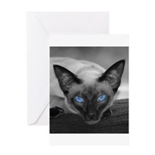 Siamese Cat B&W Photo Art Greeting Card