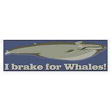 Whale Bumper Bumper Sticker