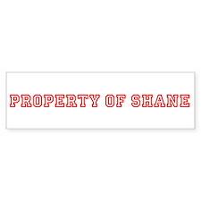 PROPERTY OF SHANE Bumper Bumper Sticker