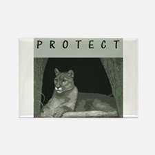 Cougar Rectangle Magnet