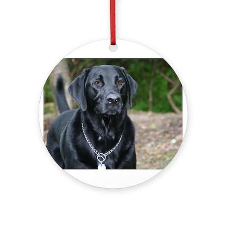 Gage - Black Labrador - Photo Ornament (Round)