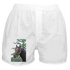 MENIFEE Boxer Shorts
