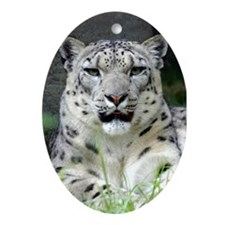 Ornaments Oval snow Leopard 2