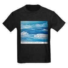 floating icebergs T