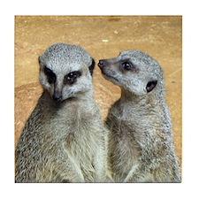 Magnificent Meerkats. Photos Tile Coaster
