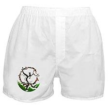 Cute Media Boxer Shorts