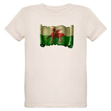 Antique Flag of Wales T-Shirt