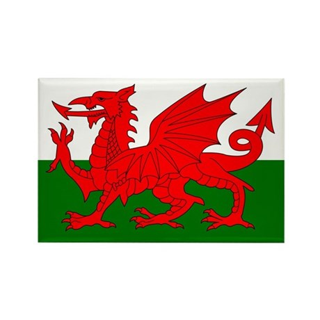 Flag of Wales (Welsh Flag) Rectangle Magnet