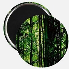 Bamboo Forest Look Magnet