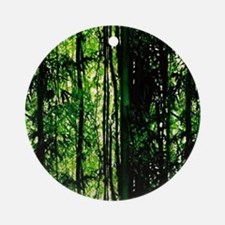 Bamboo Forest Look Ornament (Round)