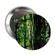 "Bamboo Forest Look 2.25"" Button"