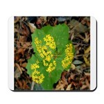 Yellow Flowers On Green Leaves Mousepad