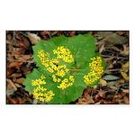 Yellow Flowers On Green Leaves Sticker (Rectangula