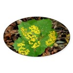 Yellow Flowers On Green Leaves Oval Sticker