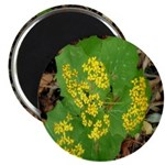 Yellow Flowers On Green Leaves Magnet