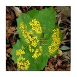 Yellow Flowers On Green Leaves Tile Coaster