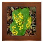 Yellow Flowers On Green Leaves Framed Tile