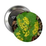 Yellow Flowers On Green Leaves Button