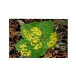 Yellow Flowers On Green Leaves Rectangle Magnet (1