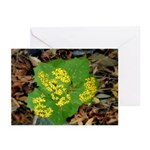Yellow Flowers On Green Leaves Greeting Cards (Pac