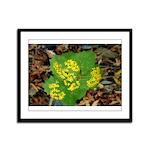 Yellow Flowers On Green Leaves Framed Panel Print