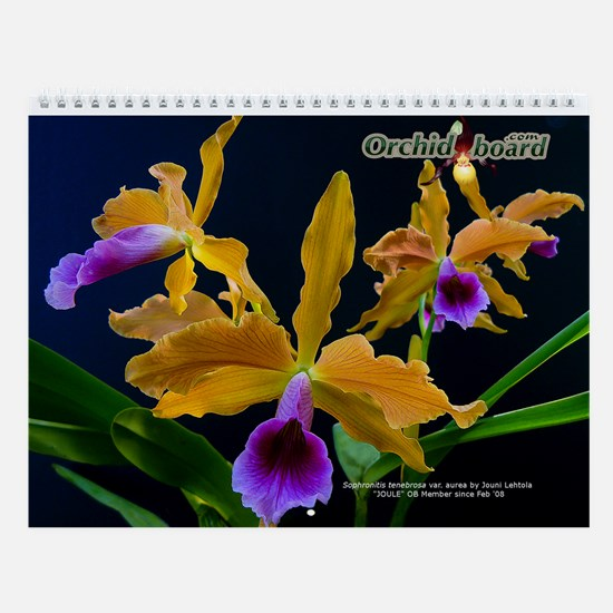 Orchid Board Wall Calendar (2010 Contest Photos)