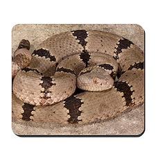 Rattlesnake Mousepad