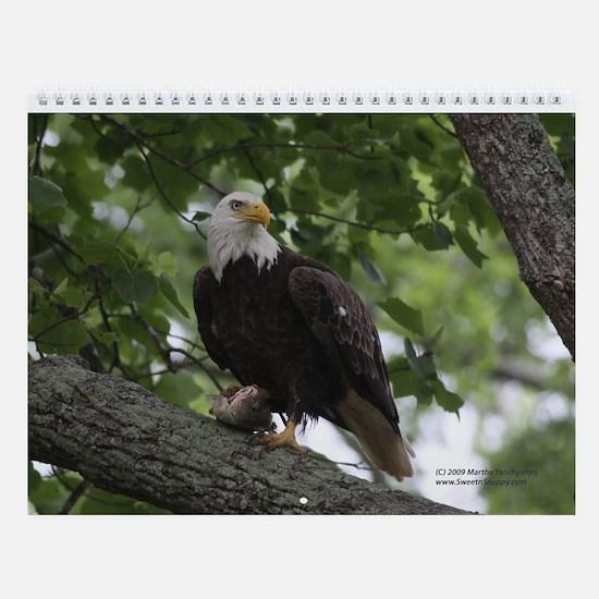 A Year of Eagles Wall Calendar