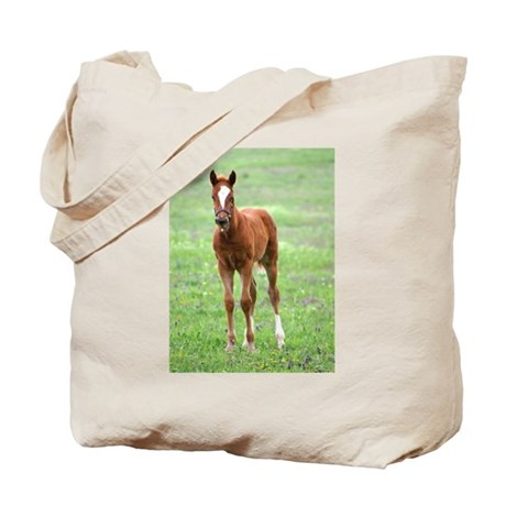 BABY COLTS Tote Bag