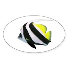 Fish on Oval Decal