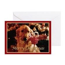 Golden Retriever Merry Christmas Cards (Pk of 10)