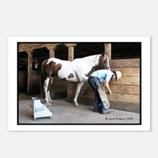 Amish Ferrier Color Postcards (Package of 8)