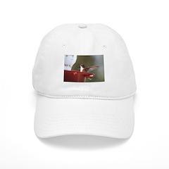 Smoking Hummingbird Baseball Cap