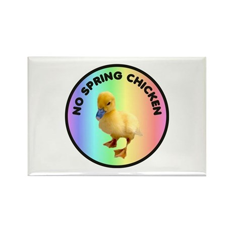 No spring chicken Rectangle Magnet (100 pack)