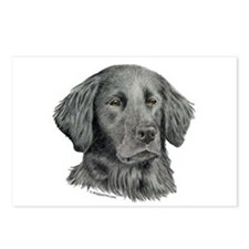 Flat-Coated Retriever Postcards (Package of 8)
